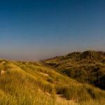 Dünenlandschaft bei Brügge